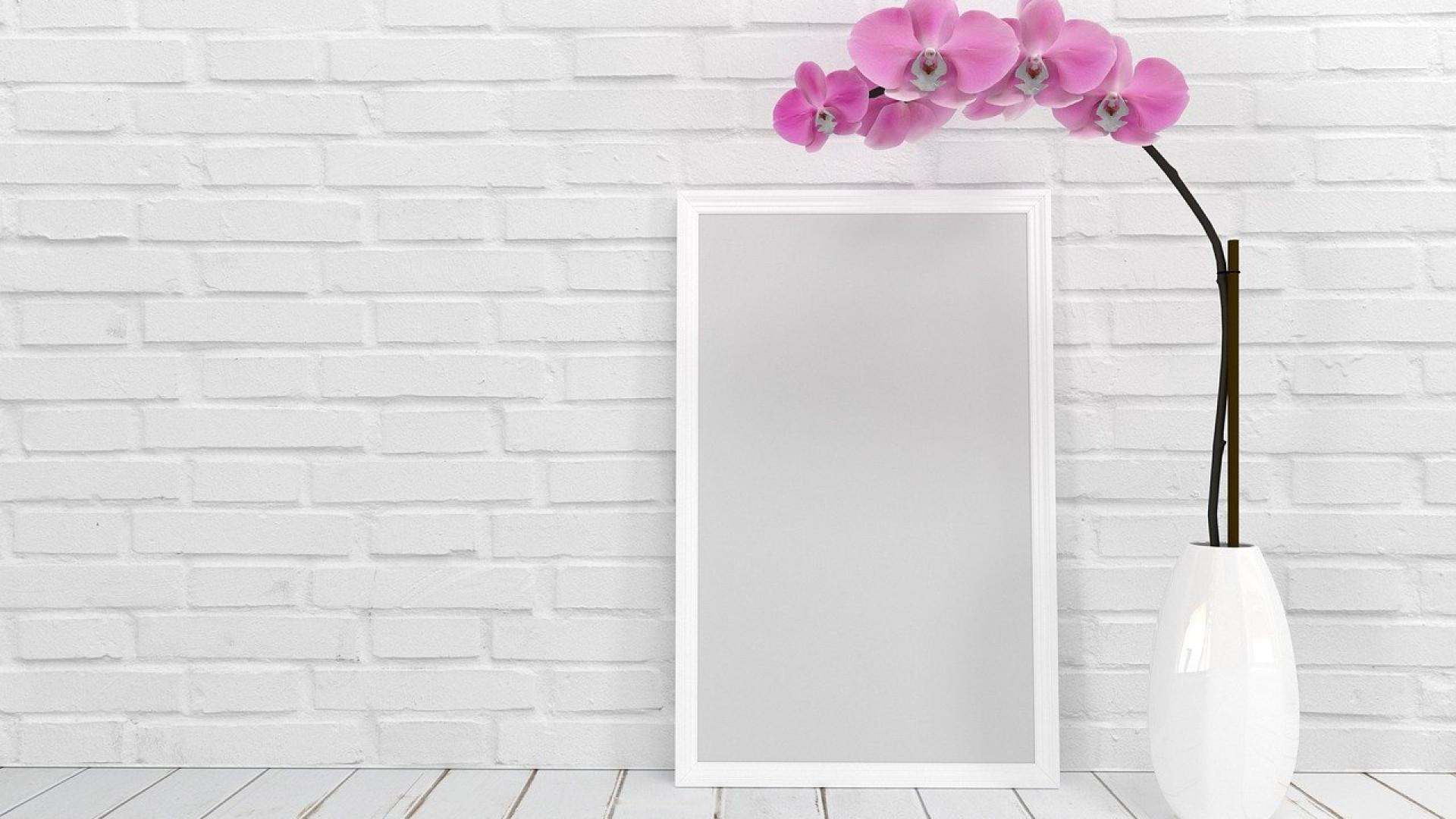 Pourquoi suivre des blogs sur la décoration d'intérieur de maison ?
