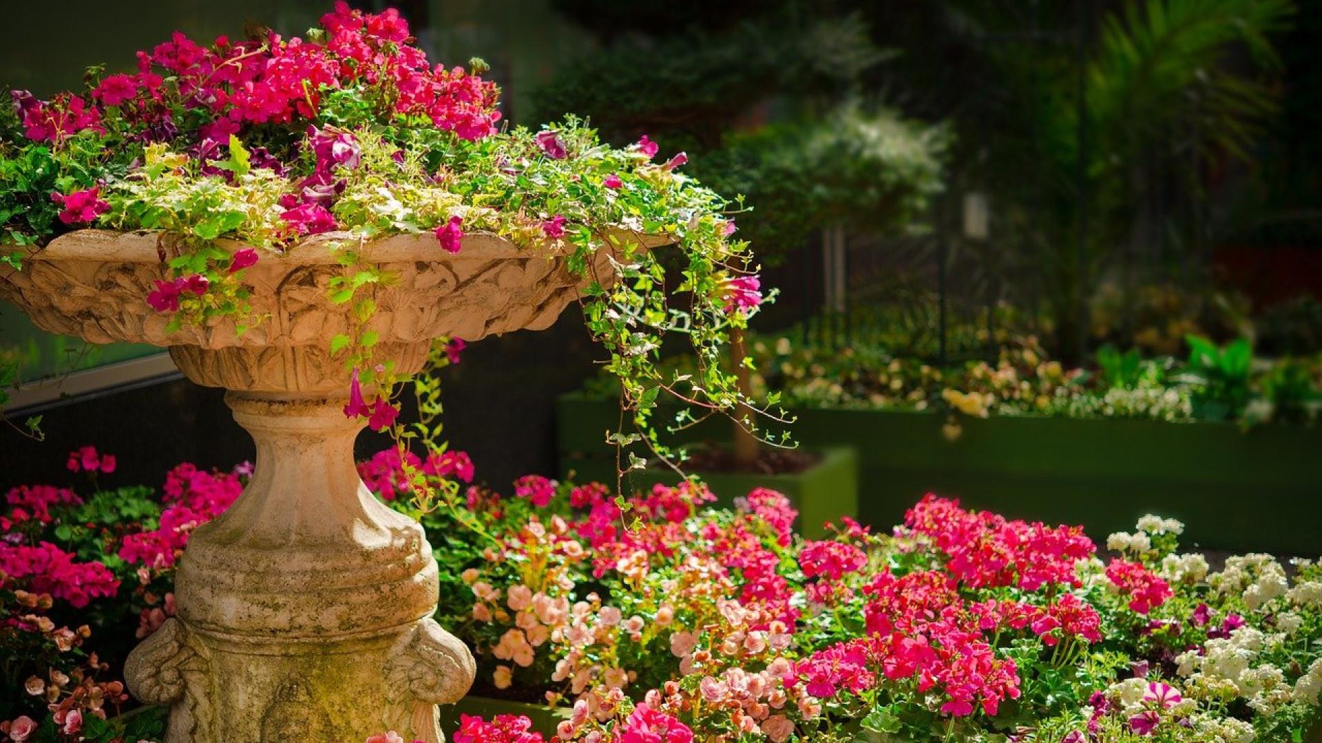 Un large choix d'éclairage pour mettre en lumière votre jardin